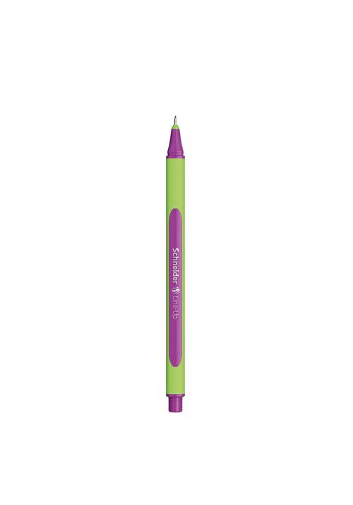 Line-up-violeta